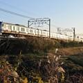 Photos: 1123-MS-04