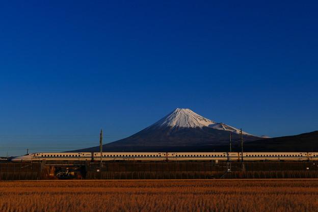 謹賀新年的1/2の富士山とN700系