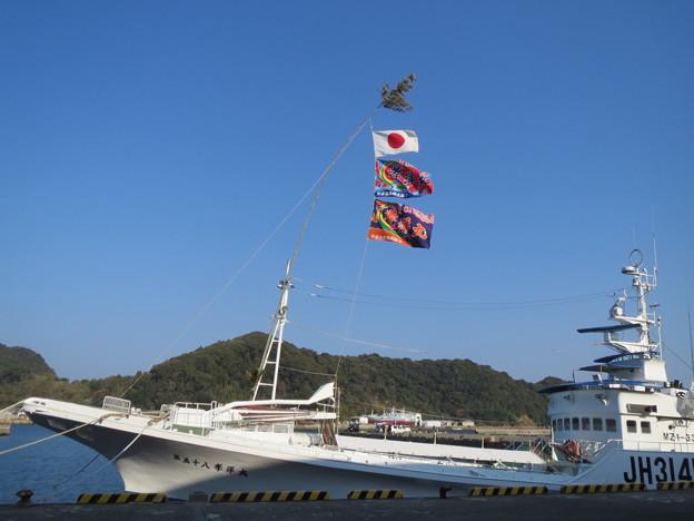 カツオ漁船団