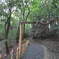 Photos: 出雲大神宮(京都府亀岡市)
