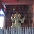 妙本寺(鎌倉市)