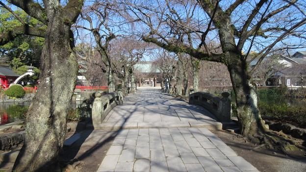 三嶋大社(静岡県三島市)