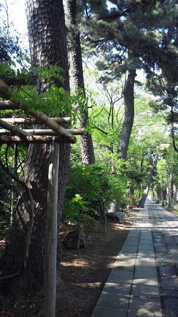 越谷市の郷社、久伊豆神社