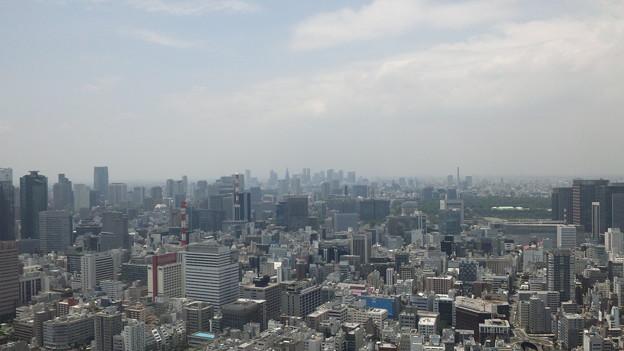 Photos: 今日の東京6/17