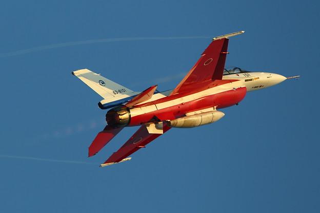 夕日にF-2おしり