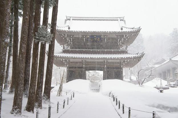 雪煙る山門