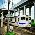 Photos: 駅・列車・お魚( ˘ω˘ )