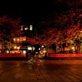 Photos: 夢舞台