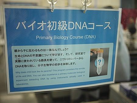 DNAセミナー