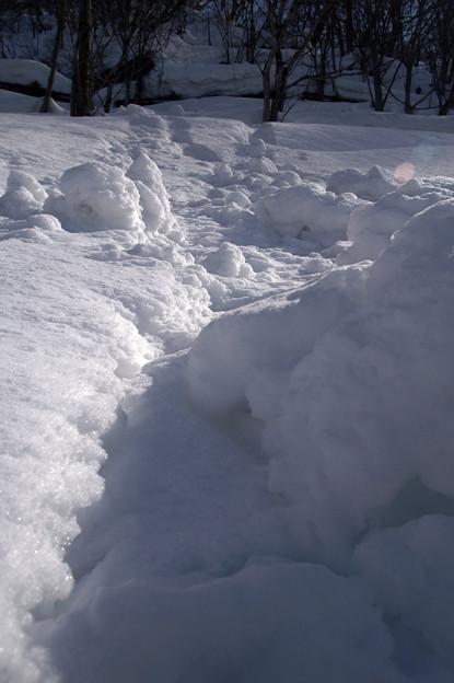 すこし雪崩れました。