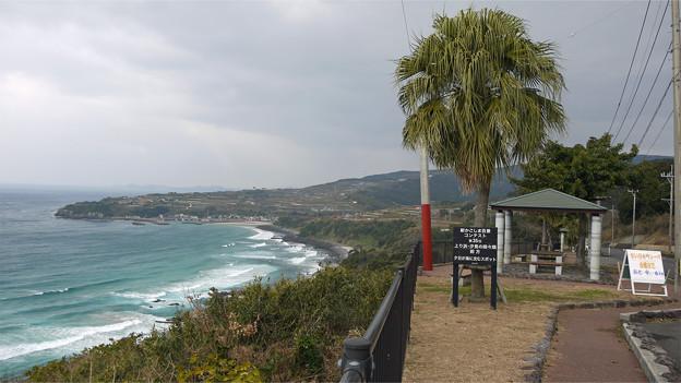 上り浜・汐見の段々畑(1)