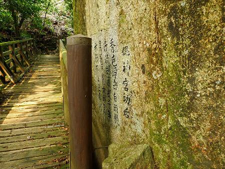 観音の滝(14)