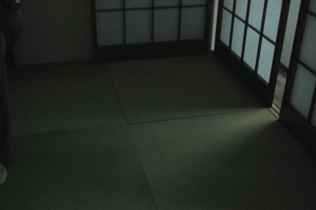 Photos: 光が
