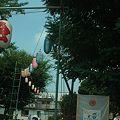 Photos: 椿山