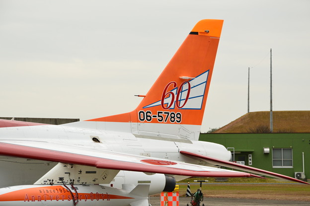 築城基地航空祭 芦屋基地記念塗装T-4
