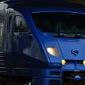 青いソニック883系