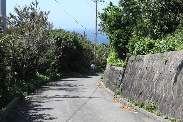 写真: IMG_6794神津島__天上山登山と島巡り