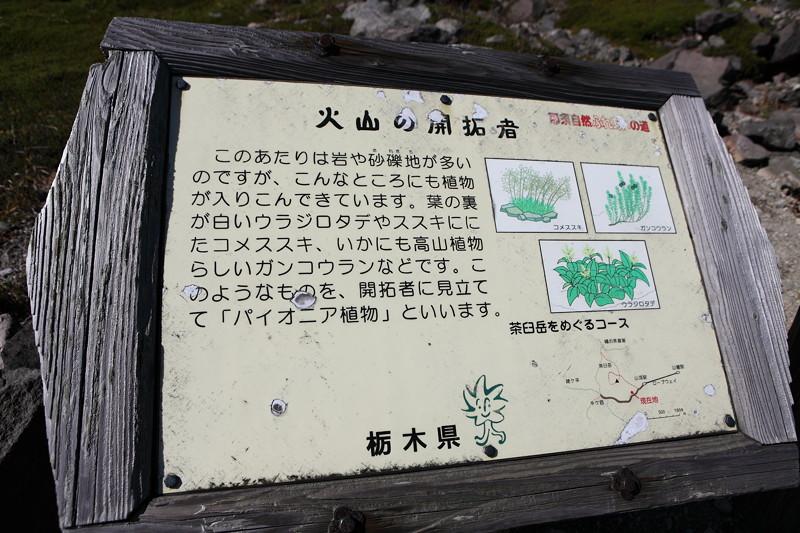IMG_8811那須 茶臼岳 姥ヶ平の紅葉