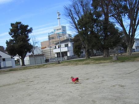 20110103 007