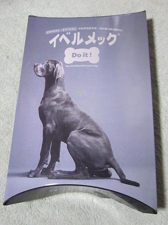 20110417 006