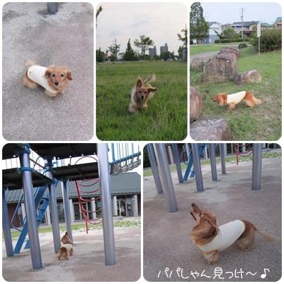20110724 お散歩