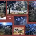 10月の上高地 コラージュ(5) 田代池