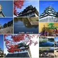 秋の名古屋城
