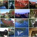 百済寺(湖東三山)