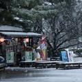 Photos: 雪の兼六園 お店  ソフトクリーム(@_@;)