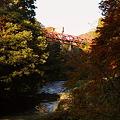 写真: 鶴仙渓 紅葉(8) あやとり橋