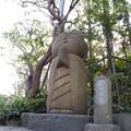 Photos: 和み地蔵