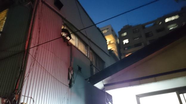 http://art37.photozou.jp/pub/900/3133900/photo/213975138_624.v1415451756.jpg