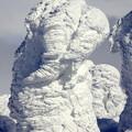 Photos: 樹氷17