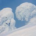 Photos: 樹氷26
