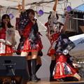木之本七本槍祭り(KRD8)0167