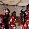 木之本七本槍祭り(KRD8)0174
