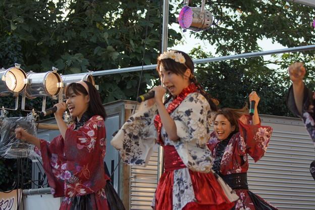 Photos: 木之本七本槍祭り(KRD8)0216