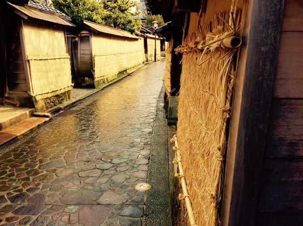 雨上がりの朝、長町武家屋敷跡地風景。。2月15日