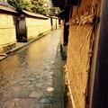 Photos: 雨上がりの朝、長町武家屋敷跡地風景。。2月15日