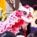 Photos: 春節の名物 中国獅子舞。。横浜中華街 2月21日