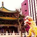 Photos: 横濱媽祖廟と中国獅子舞の舞。。横浜中華街 2月21日