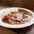 鹿肉カレー(道の駅・ごまさんスカイタワー【和歌山】)