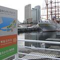 Photos: 日本丸