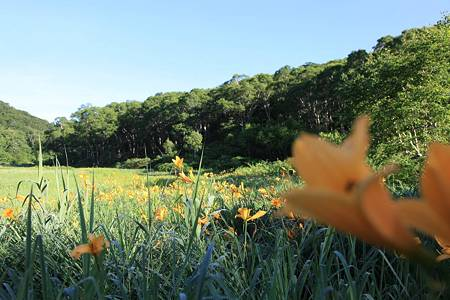 志賀高原ツーリング_20100719-064822北ドブ湿原