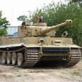 写真: tiger1-bovington