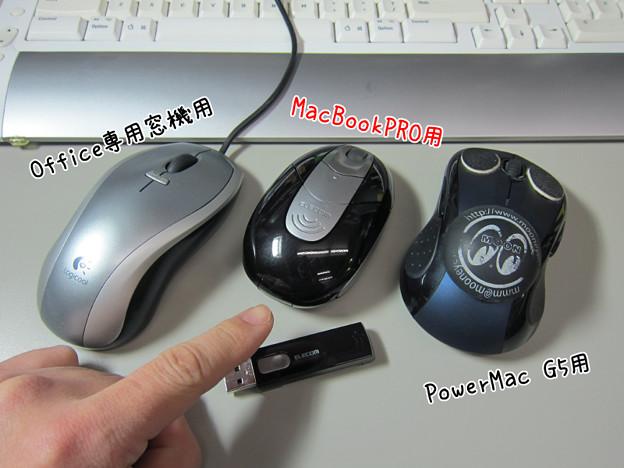 Photos: 使用中のマウス