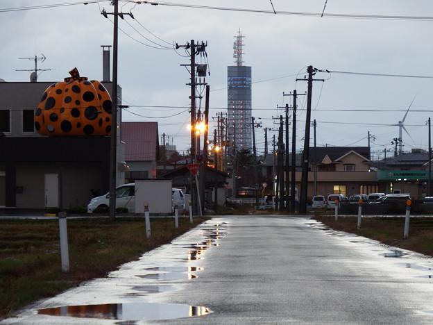 草間彌生さんのかぼちゃとポートタワー セリオン