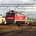 Photos: EF510‐11牽引 733系甲種輸送 vol.2