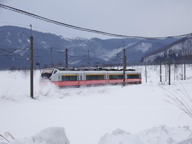 E751系 特急つがる5号 (4)