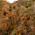 Photos: 秋の日光